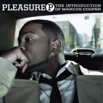 pleasure p album cover 150x150