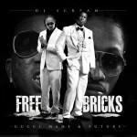 free bricks 150x150