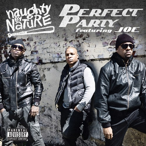 naughty by nature perfect party 500x500