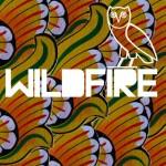SBTRKT – 'Wildfire (Remix)' (Feat. Drake)