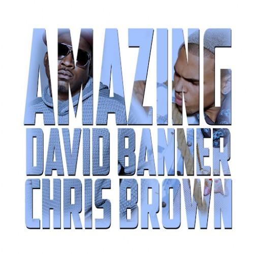 david banner amazing 500x500