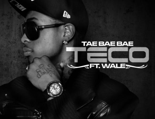 wale teco 500x384