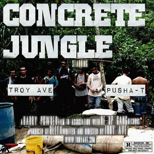 concrete jungle pusha t troy ave