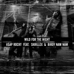 A$AP Rocky – 'Wild For The Night' (Feat. Skrillex & Birdy Nam Nam)