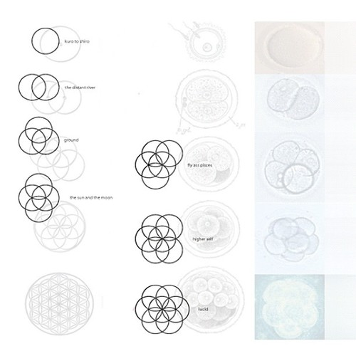 Flower of Life EP back cover