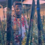 Video: Fabolous – 'We Get High'