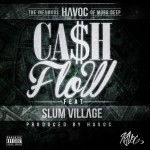 havoc cash flow 150x150