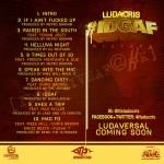 ludacris IDGAF back 150x150