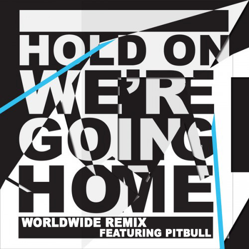 pitbul hold on were going home