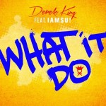 Derek King - What It Do