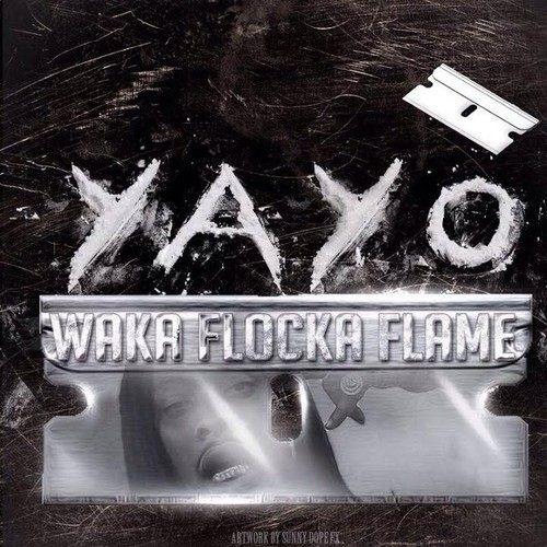 waka flocka flame - yayo