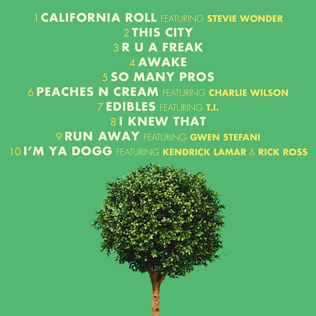 Snoop Dogg – 'BUSH' (Album Cover & Track List) | HipHop-N-More
