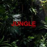 Drake Announces 'Jungle Tour' With Future