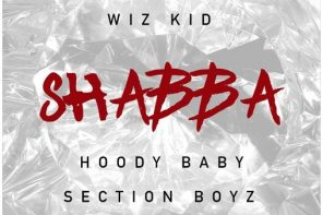 New Music: Chris Brown – 'Shabba' (Feat. Wiz Kid, Hoody Baby & Section Boyz)