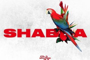 New Music: Wizkid – 'Shabba' (Feat. Chris Brown, Trey Songz & French Montana)